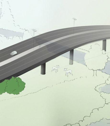Stikstofmist ook van invloed op voorbereidingen verbreding A58 tussen Eindhoven en Tilburg