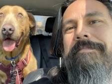 Il retrouve son chien disparu depuis quatre ans à 1.300 kilomètres de chez lui