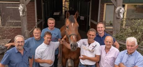 Handjeklap en handel in Enter bij 52ste paarden- en ponymarkt