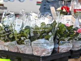 Vrijwilligers gezocht voor Plantjesweekend van Kom op tegen Kanker
