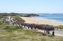 Het peloton, onderweg van Lorient naar Quimper, in de vijfde etappe van de Tour.