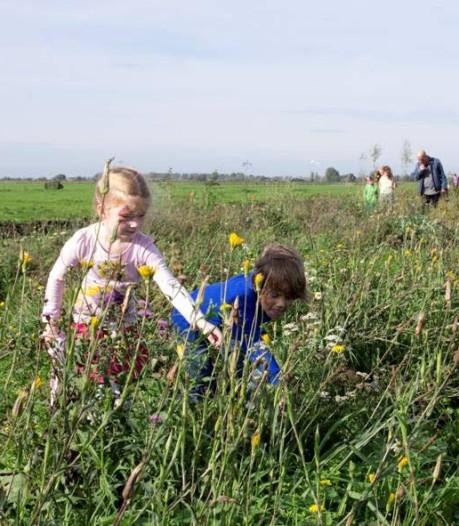 Prachtlint van streekeigen bloemen slingert straks ook door de provincie Utrecht