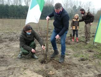 Met 25.000 nieuwe bomen in Molenbeekvallei krijgen inwoners nieuw recreatiegebied