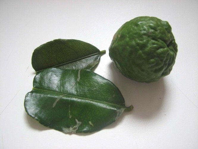 Citron kafir (ou cumbava).