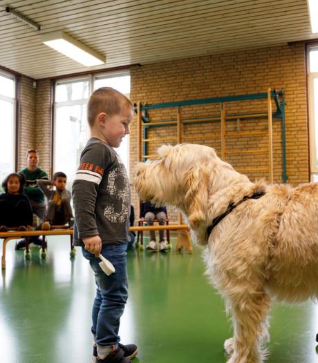 Hond voor de klas op basisschool in Wezep: eerst laten snuffelen, dan pas aaien