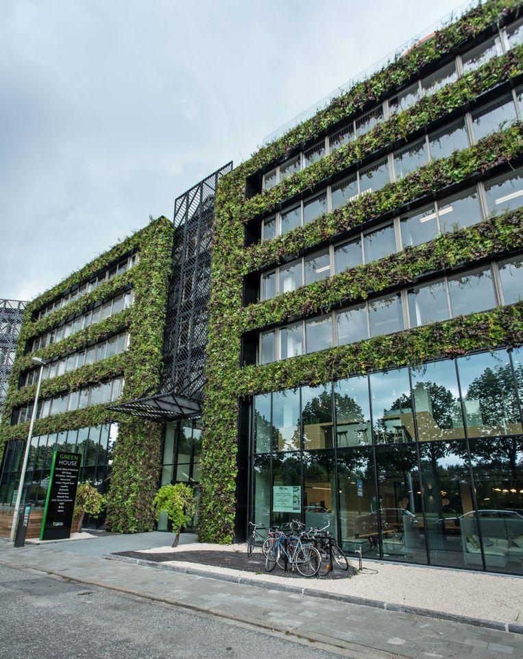 Green House Antwerp