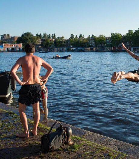Zwemmen in Amsterdam: hier kun je een duik nemen in natuurwater