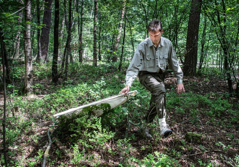 Bioloog Arnold van Vliet (Wageningen Universiteit) heeft een speciale app ontwikkeld waarmee je teken snel opspoort. Hier sleept hij een tekendoek over de bosgrond.   Beeld Koen Verheijden