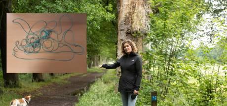 Lot ontdekte gespannen touw over bospad in Baarn: 'Dit was echt levensgevaarlijk'