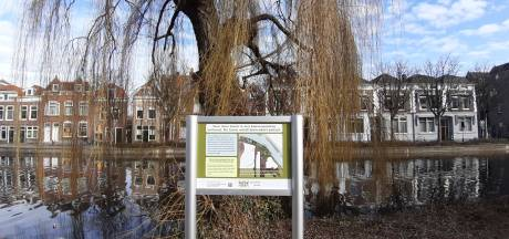 Geen onaangename verrassingen meer als de zaag erin gaat: 'Voorlichting over bomenkap moet beter'