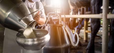 Is het gevaarlijk om rauwe melk te drinken? Of juist heel gezond?