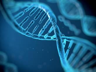 Al negentien onbekende lichamen geïdentificeerd dankzij DNA-databank voor vermiste personen