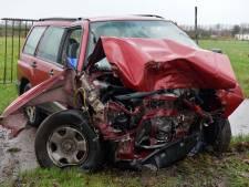 Bestuurster botst met auto op twee bomen en lantaarnpaal in Hoogeloon