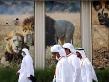 Ooit komt een eind aan overvloed in olie en gas: zo verleidt Dubai toeristen