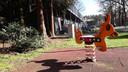 Wipkip op het terrein van het azc in Oisterwijk.