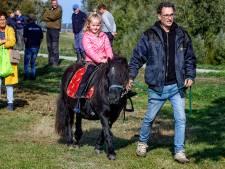 Alternatieve ponymarkt in Brakel: 'Zo kunnen we beter afstand houden'