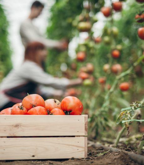 Boxmeer wil meer ruimte geven voor huisvesten buitenlands personeel