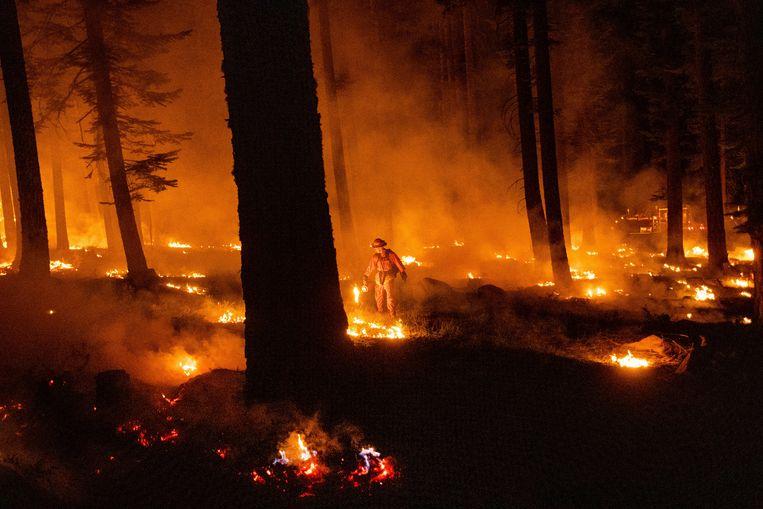 Bepaalde rampen zoals vernietiging van de natuur zijn nefast voor onze beschaving. Beeld