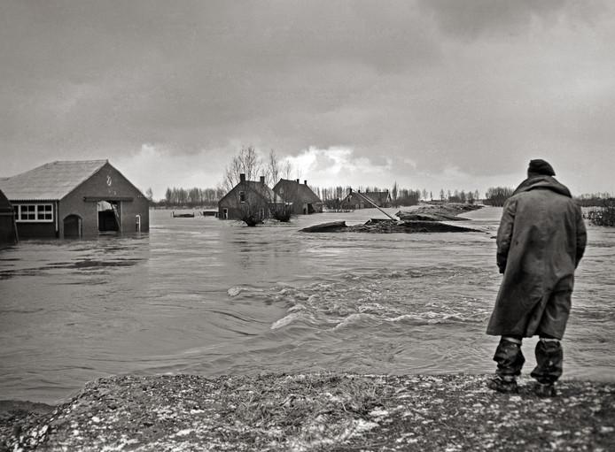 De polder tussen Kruiningen en Waarde, Zuid-Beveland, is geheel ondergelopen.