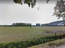 Noordwest Wageningen en ondernemers botsen over plan voor zonnepark