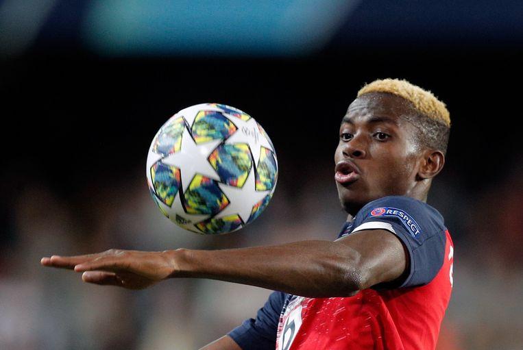 Victor Osimhen trok van Charleroi naar Lille. Daar kon hij zijn kwaliteiten in de Champions League tonen.  Beeld EPA