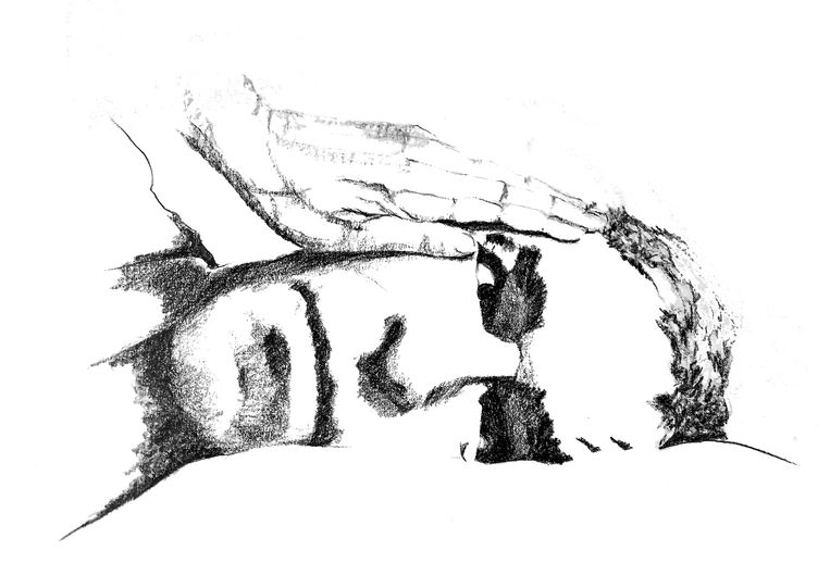 Illustraties uit het boek Kap van afschuw.  Beeld Irma Jansen