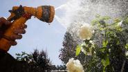 Juni 2018 was de droogste junimaand in meer dan 40 jaar