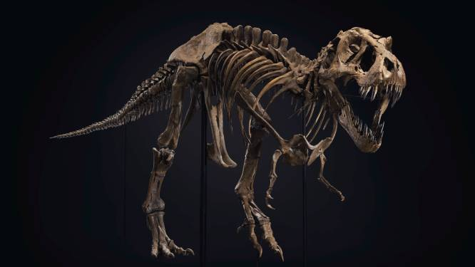 Hoe 'Jurassic Park' de bottenbusiness deed exploderen (en waarom dat slecht nieuws is voor wetenschappers)