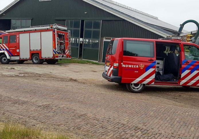 De brandweer kwam ter plaats in brandweer om een vastzittende koe uit een gierput te trekken.