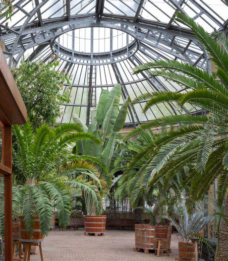 Directeur Hortus Amsterdam: open de tuin, juist nu