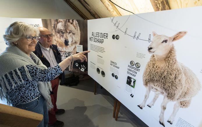 Jan en Emmy Huiskes bekijken de expositie in het weer geopende educatief centrum van de Stichting Schaapskudde Haaksbergen.