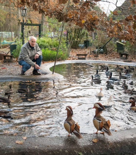 Pluimvee- en Pelsdierenfokkers Vereniging Putten onzeker op eeuwfeest