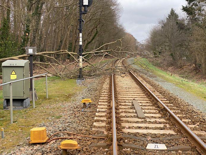 Treinreizigers tussen Lochem en Zutphen ondervonden hinder van een omgevallen boom.