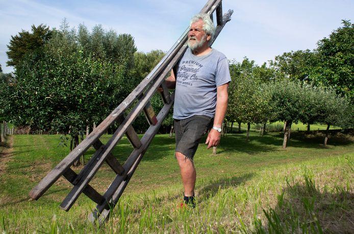 Jan Noorlandt tussen zijn bomen aan de Tiendweg in Lopik. Ze moeten mogelijk om voor de dijkverzwaring.