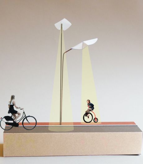 Heeswijk-Dinther krijgt kunst op Traverse: verlichtende dovenetels