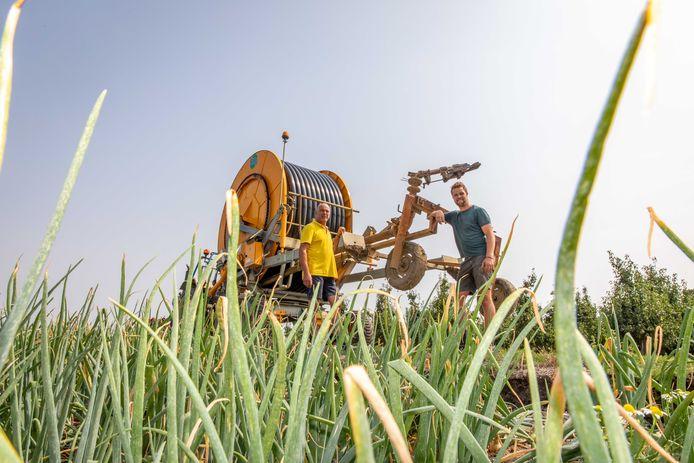 Boeren (hier in Waarde) beregenen hun gewassen