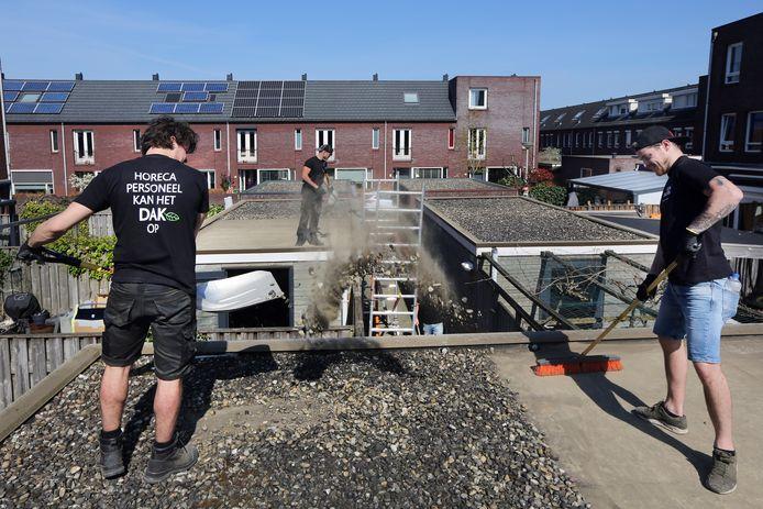 Onder het mom 'Horeca-personeel kan het dak op' zijn de enkele mensen die normaal in de kroeg werken nu tijdelijk bezig met de aanleg van groene daken op 23 bergingen in de Belcrum in Breda.