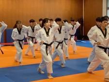 Zuid-Koreaanse taekwondo-atleten tonen hun kunnen in Brugge
