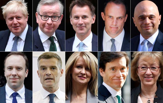 Les candidats à la succession de Theresa May à la tête des Tories: 1e ligne, de gauche à droite: Boris Johson, , Michael Gove, Jeremy Hunt, Dominic Raab, Sajid Javid; 2e ligne, de gauche à droite: Matt Hancock, Marker Harper, Esther McVey, Rory Stewart et Andrea Leadsom