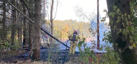 Brand bij schuur slaat over naar natuur er omheen in Riethoven