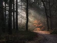 Fotowedstrijd Brabant in beeld: de magie van een flinke onweersbui