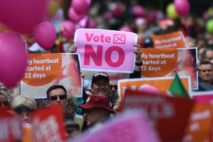 Protestmars in Dublin vooruitlopend op de stemming.