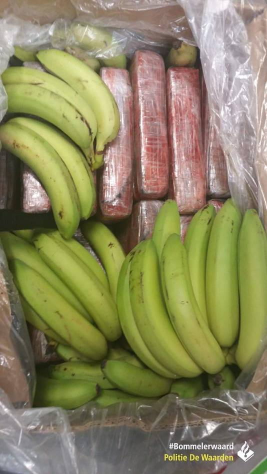 Tussen de bananen werd in 2017 12 kilo cocaïne gevonden.