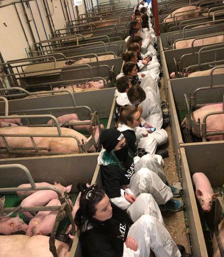 Einde aan urenlange bezetting boerderij in Boxtel: tientallen demonstranten opgepakt