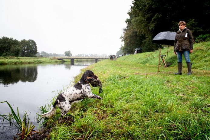 Ina Sluis' hond Anders doorstaat de lastigste proef: het ophalen van een eend aan de andere kant van het water.