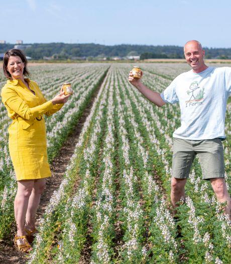 Lupine wint van de sojaboon: biologisch, gezond, én ze zien er mooi uit