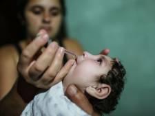 Aantal zikabesmettingen Brazilië daalt drastisch