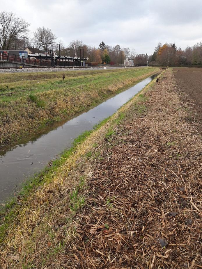 Boeren krijgen de gelegenheid om het water in smalle watergangen te controleren met grote ballen.