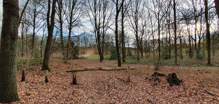 De omgeving van de Konijnenberg wordt ook  niet langer door iedereen als een rustige omgeving beschouwd.