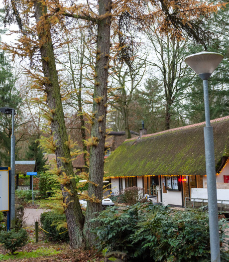 Stel dat vakantiehuis in Wissel bezit is controles gemeente spuugzat: 'laat ons met rust'